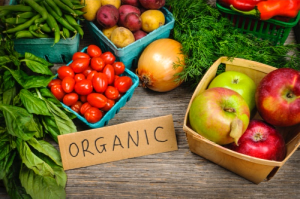 Organic Food Diet For Cancer Patients